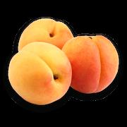 Apricots sillo