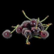 Black cherries sillo