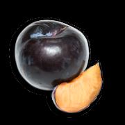 Black plums sillo