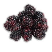 Blackberries sillo