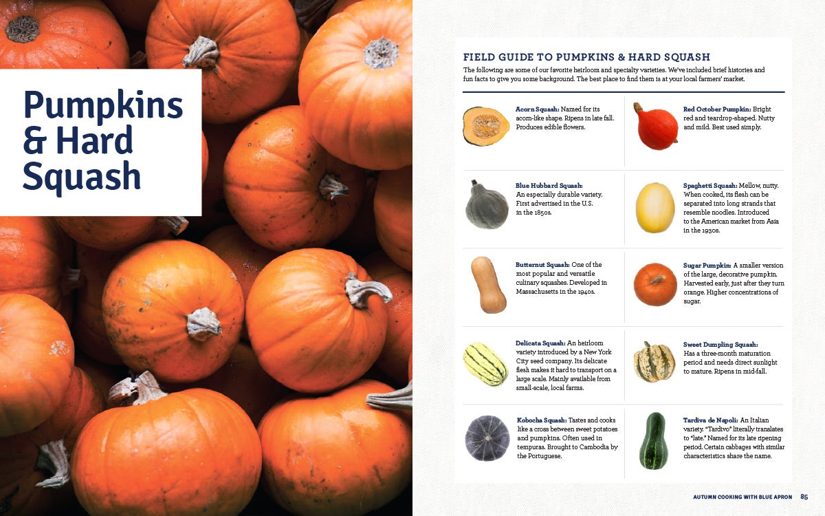 Blue apron online application