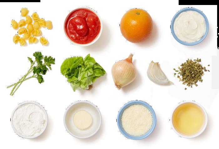 Creamy Lumaca Rigata Pasta with Butter Lettuce & Orange Salad