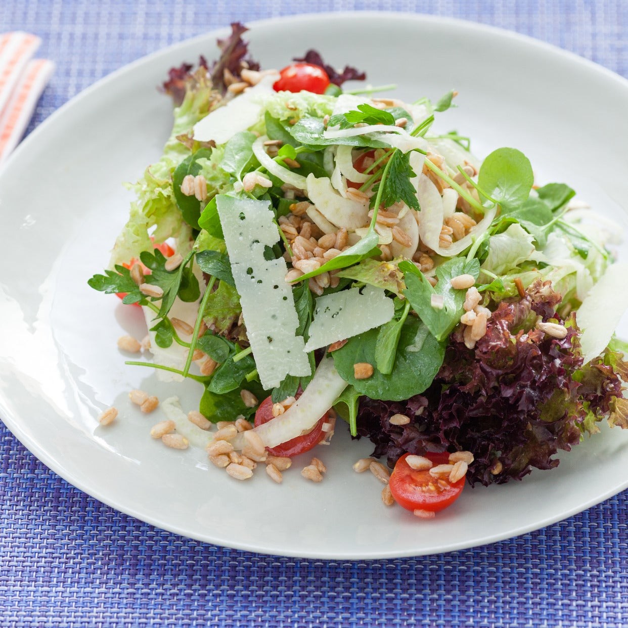 Shaved Fennel & Pecorino Salad with Lollo Rosso, Farro & Lemon Vinaigrette