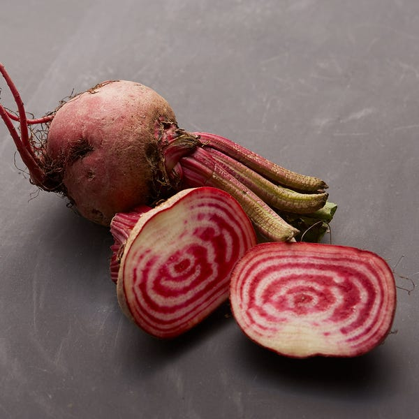 Beauty chioggiabeet 6422