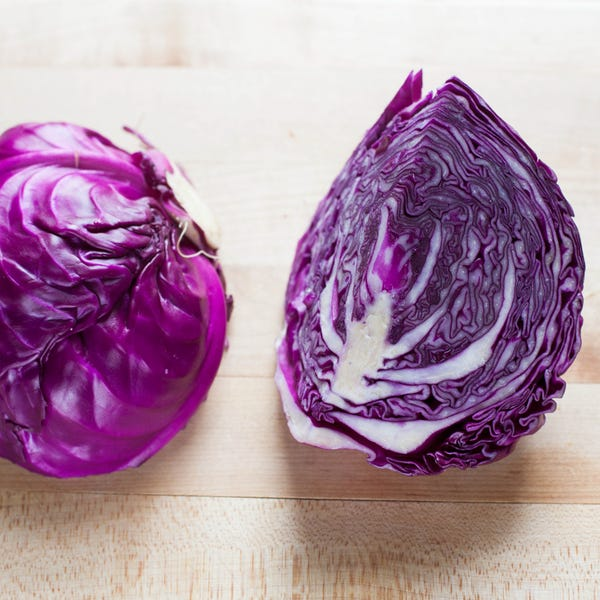 Beauty 20  20red 20cabbage 0784