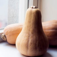 Beauty  20butternut 20squash thumb