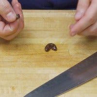 Pitting olives square thumb