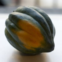 Beauty 20  20acorn 20squash 20  209050 thumb