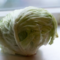 Beauty 20 20  20iceberg 20lettuce 20  209873 thumb