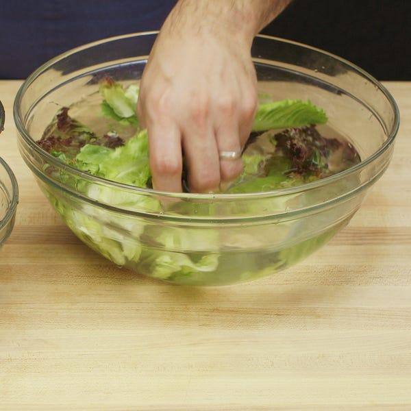 Lettuce   washing sq