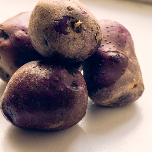 Beauty 20  20adirondack 20purple 20potatos 2454