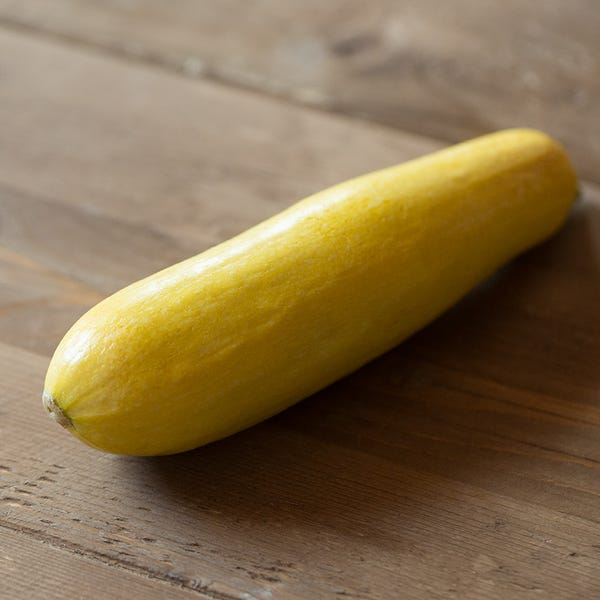 Beauty yellowsquash 7220