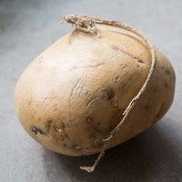 Beauty jicama 3418 thumb