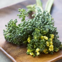 Beauty broccolini 4015 thumb